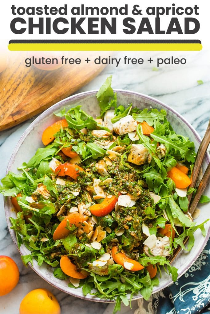 toasted almond & apricot chicken salad pin graphic
