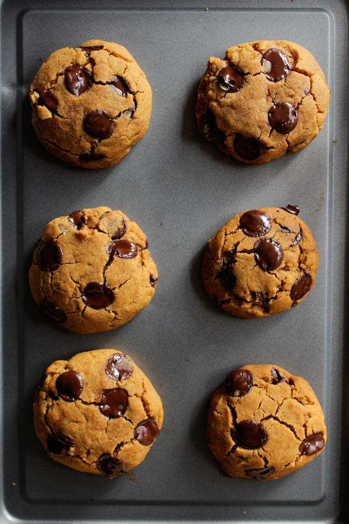 Vegan Chocolate Chip Pumpkin Cookies + Video