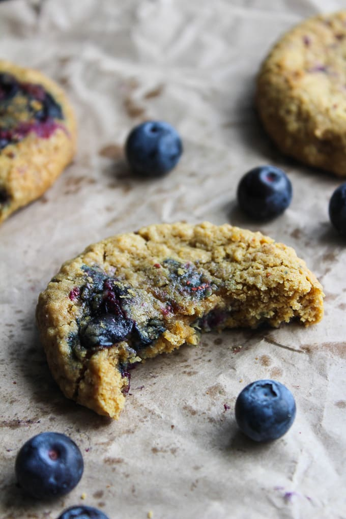 Oatmeal Blueberry Cookies | One bowl and less then 10 ingredients | Gluten Free & Low FODMAP