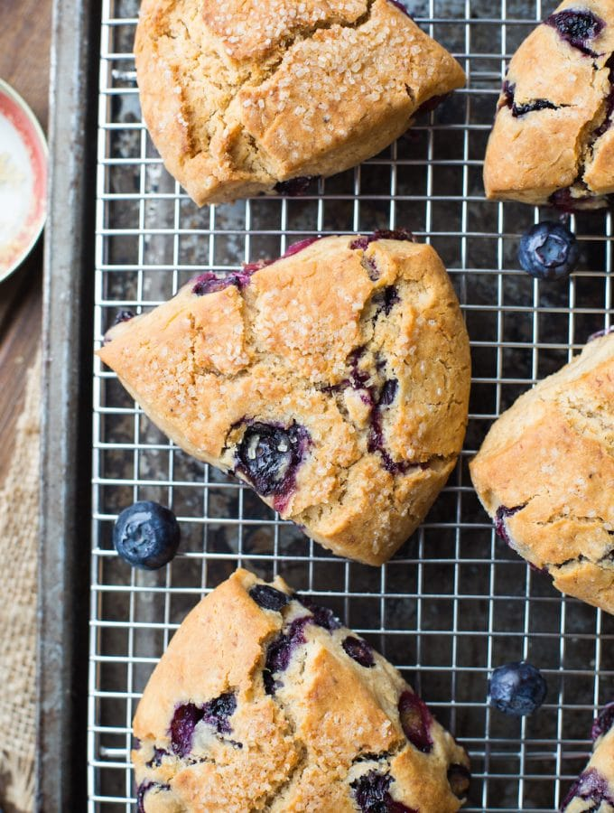 Vegan Gluten Free Blueberry Scones