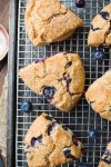 Vegan Gluten Free Blueberry Scones on a cooling rack