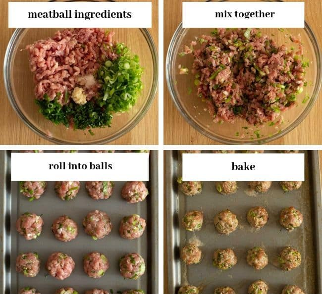 Chicken-Meatball-Coconut-Curry meatball collage