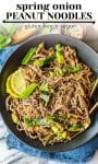 Spring Onion Peanut Noodles pin graphic