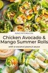 Chicken Avocado & Mango Summer Rolls pin graphic
