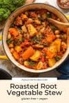 Roasted-Root-Vegetable-Stew pinterest graphic with title